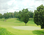 Golfing, Negros Island resorts hotels tour packages